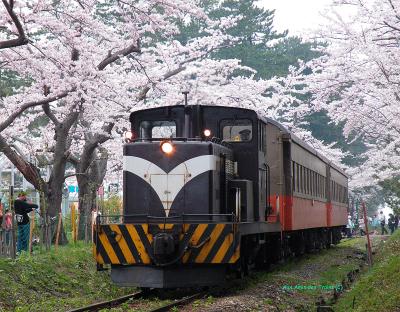 Tsugaru_dd352_w_sakura_a_ashinopark