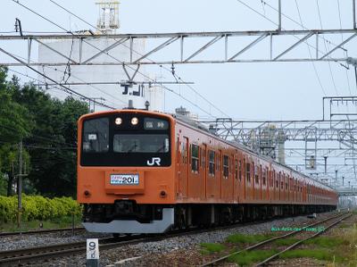 201_sayonara