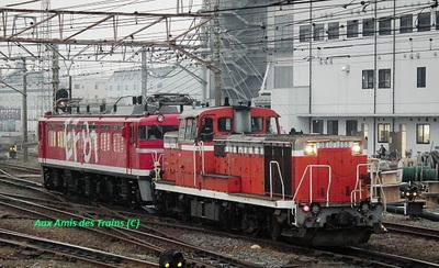 2011_sumidagawa_de101555_ef8195