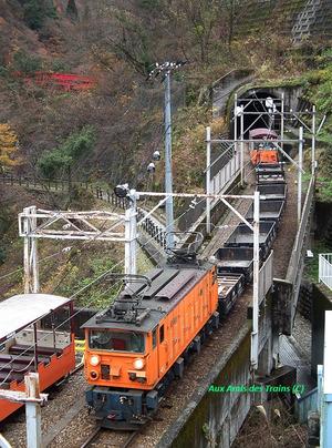 Kurobeuna11