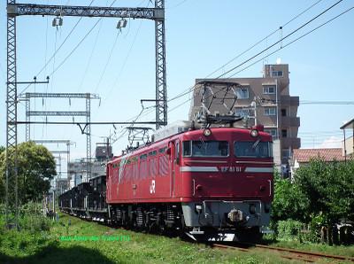 Ef8181korin