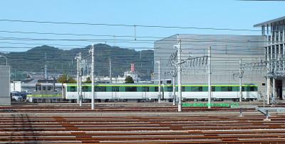 Hashimoto05