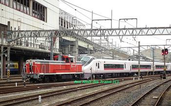 Omiyade08_e657