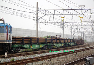 Ef81452_w_railonchiki5500x62