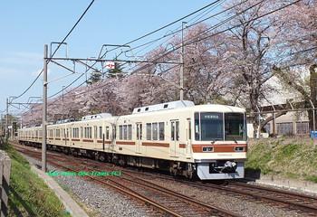 470000_kunugiyama