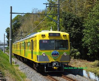 Ryutetsunanohana03