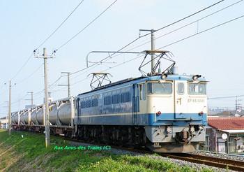 Shinkineoef651041