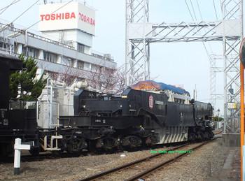 20140329shiki80010