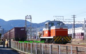 Yoshiwarashiki19