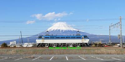 Yoshiwarashiki24