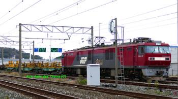 Chikikoken14111301