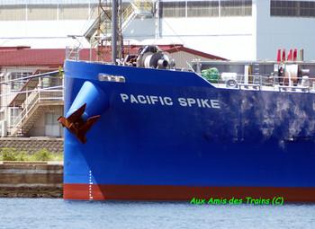 Pacificspike02