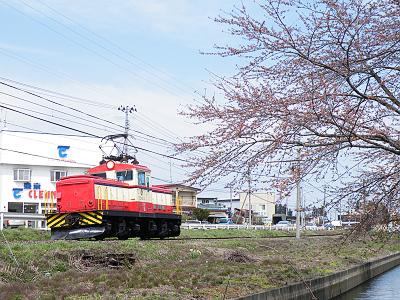 Ed402_w_sakura1