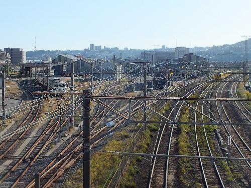 Kagoshimasyaryo11