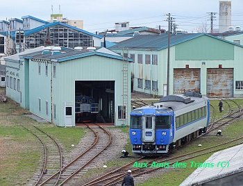 Goryokaku11