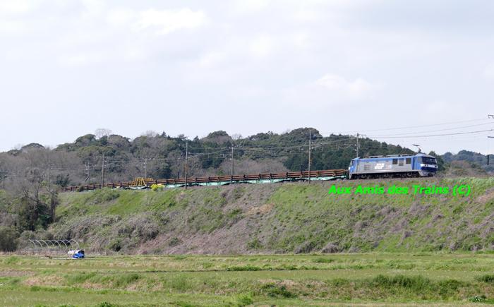 Etchujima203