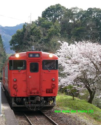 Etchujima204