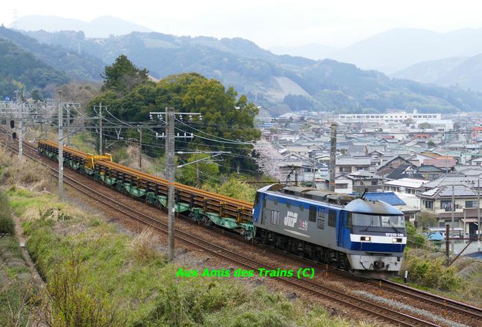 Etchujima210