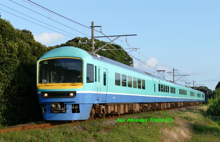 Nanohana48501