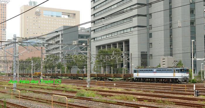 Higashiwashinomiya12