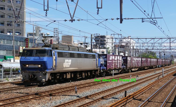 Ef20090101