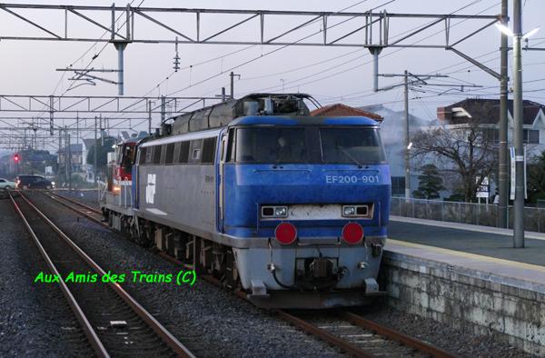 Ef20090117