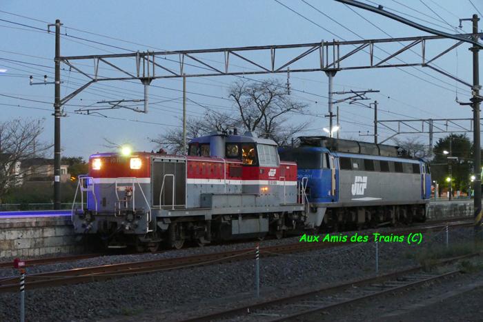 Ef20090118