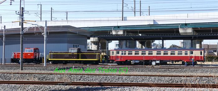 Dd131om115