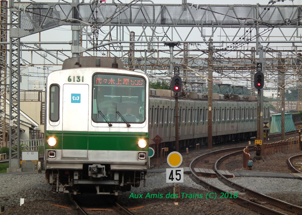 Metro6031_110515