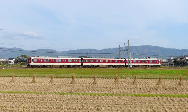 Tawaramoto80004
