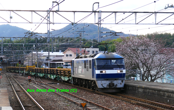 Etchujima208