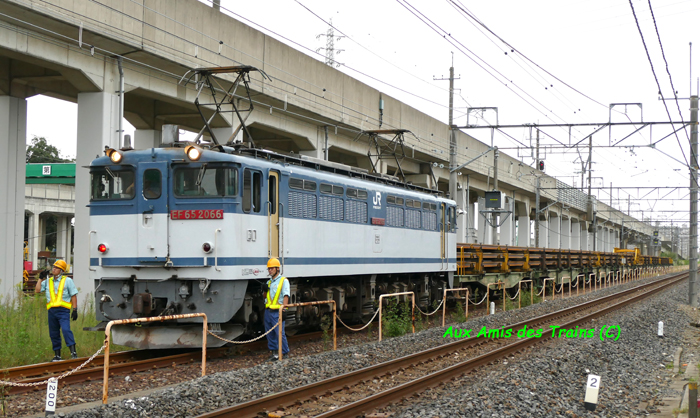 Higashiwashinomiya14