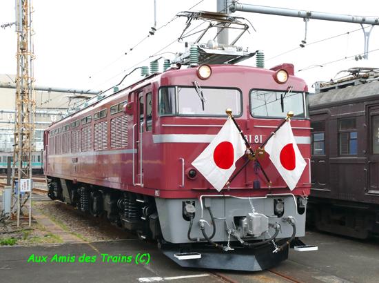 Ef8181royal