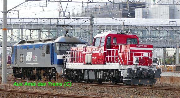 Ef210136dd200901b