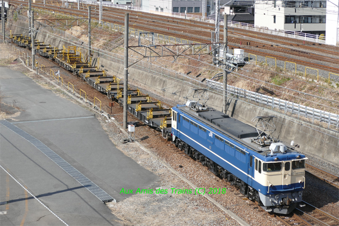 Higasiwashi65pf01