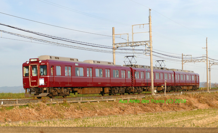 Tawaramoto80003