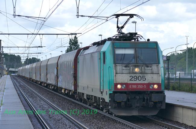 E186sncbcargo