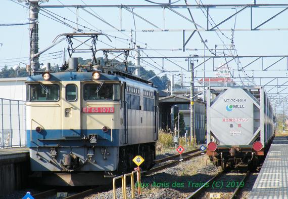 Eo_sawara200911231
