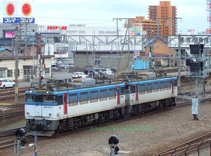 Goryokaku20130502