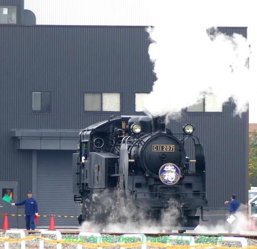 Hakodate31tobuc11207