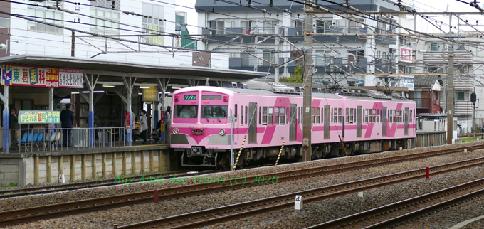 Sakura20200328